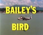 Baileys Bird
